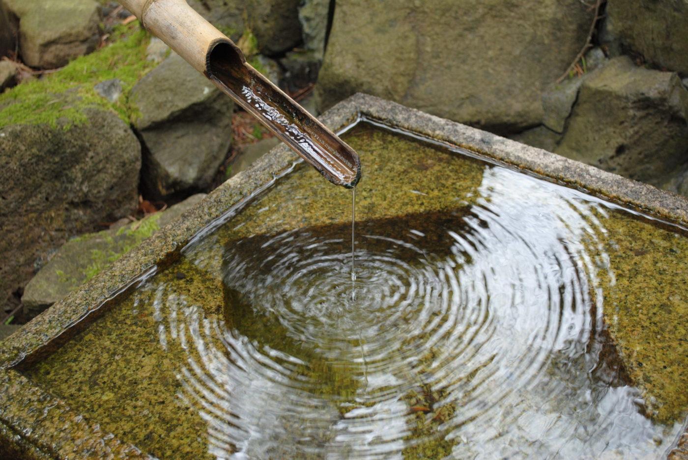 Japanese Tea Garden – Andrew Spittle